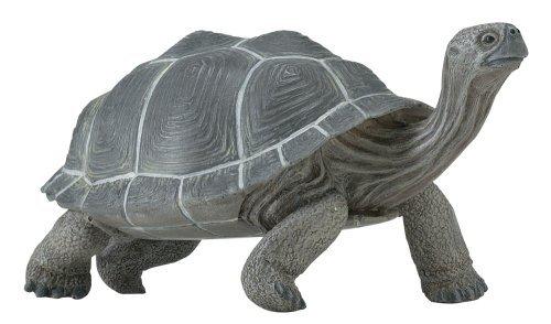 Safari Ltd  Incredible Creatures Galapagos Adult Tortoise (Galapagos Turtle)