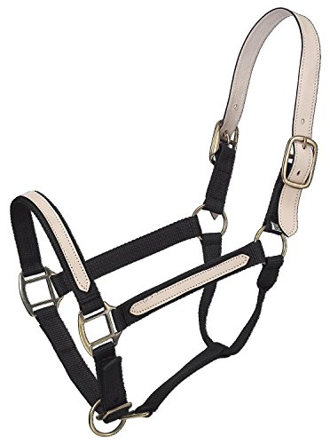 Tough 1 Break-Away Halter