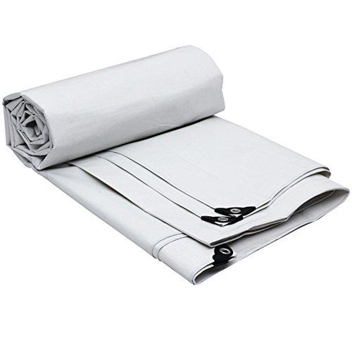 グレーカラープラスシックレインクロス防水日保護多くのサイズ (色 : Silver+white, サイズ さいず : 3 x 4m)