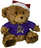FOCO East Carolina Bear with Santa Hat