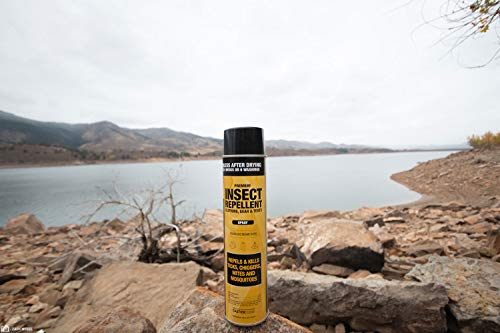 Sawyer Products SP618 Premium Permethrin Clothing Insect Repellent Aerosol Spray, 18-Ounce