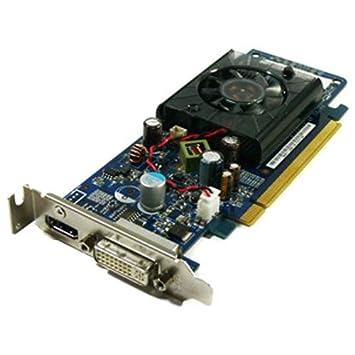 Amazon.com: 256 MB HP GeForce G100, DVI, HDMI, DDR2, PCI ...