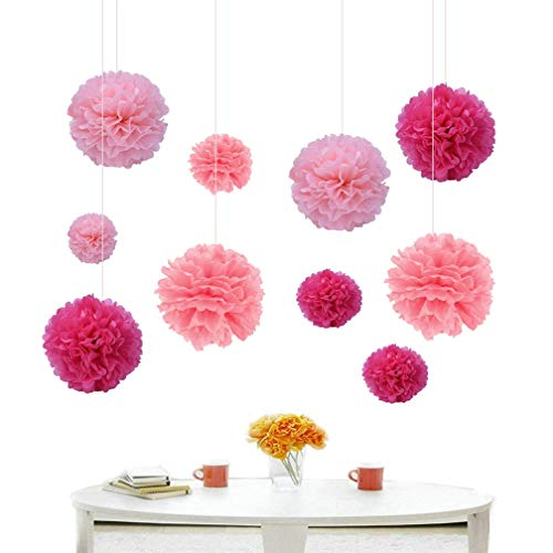 "Hanlianwen 24Pcs Tissue Paper Pom Poms Flower Balls 6"" 8"" 10"" Hanging Honeycomb Ball for Wedding Birthday Party Festival Home Garland Decoration (Pink, Light Pink, Rose) by Hanlianwen"
