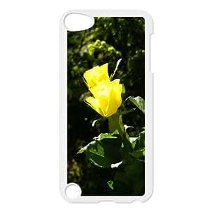 iPhone 5,5S Case,Sunshine Yellow Rose Macro Hard Shell Back Case for White iPhone 5,5S Okaycosama304513
