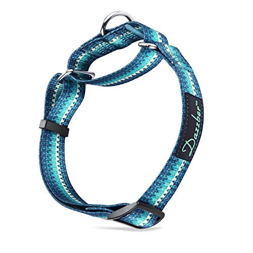 Dazzber Martingale Collars for Dogs, Turquoise Green, Neck 17-25, Heavy Duty No Pull No Escape Dog Collar for Medium to Large Dogs