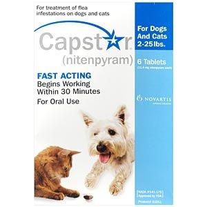 Capstar Dogs and Cats Blue 2-25lbs 6 pk Flea Treatment, My Pet Supplies