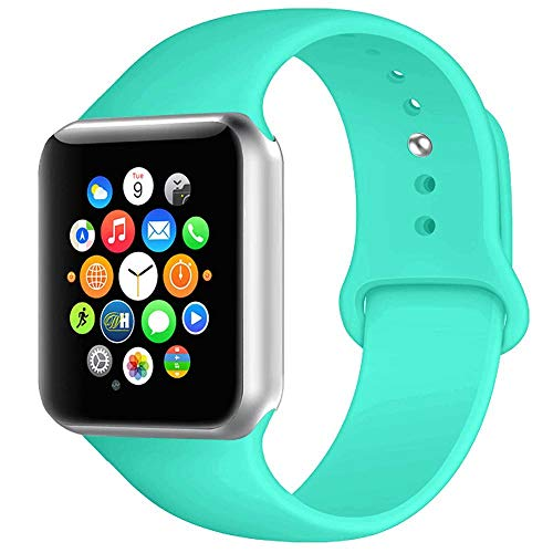 Band Mint - BOTOMALL Compatible with Iwatch Band 38mm 40mm 42mm 44mm Classic Silicone Sport Replacement Strap Bracelet for Iwatch All Models Series 4 Series 3 Series 2 1 (Mint Green,42/44mm M/L)