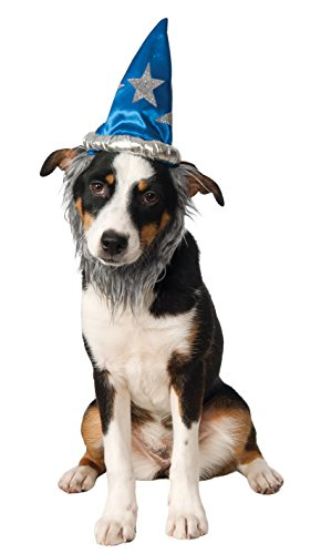 Rubie's Wizard Hat with Beard for Pets, Medium/Large -