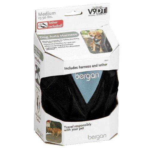Bergan Dog Auto Harness with Tether, Medium, My Pet Supplies