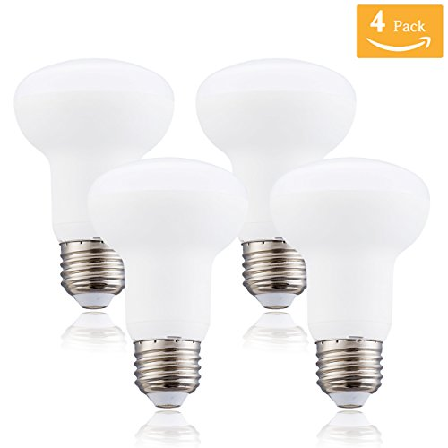 Br 25 Flood Light Bulbs in Florida - 6