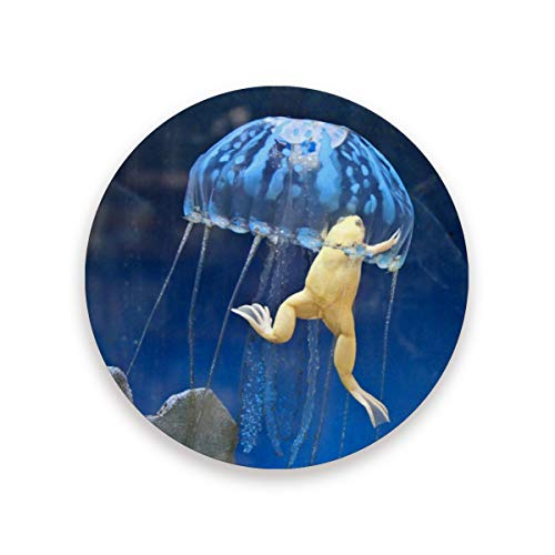 - YYZZH Marine Jellyfish Suck African Albino Frog Underwater Coasters for Drinks Set of 1, 2, 4 Round Cup Mat Pad Present Housewarming Birthday or Holiday Party