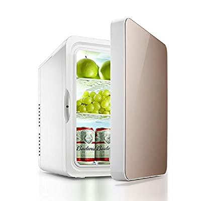 YiiYYaa Portable 12V 22-Liter Compact Cooler/Warmer Mini Fridge Freezer for Cars, Road Trips, Homes, Offices, and Dorms (Golden) DC 110V [US Stock]