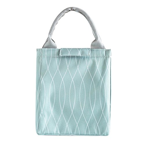 Insulated Lunch Bags for Women & Girls, Large Capacity Cooler Lunch Tote Bag Oxford Cloth Waterproof Lunch Organizer Ideal for Office, School, Picnic, Camping, Travel (Fresh Light Green)