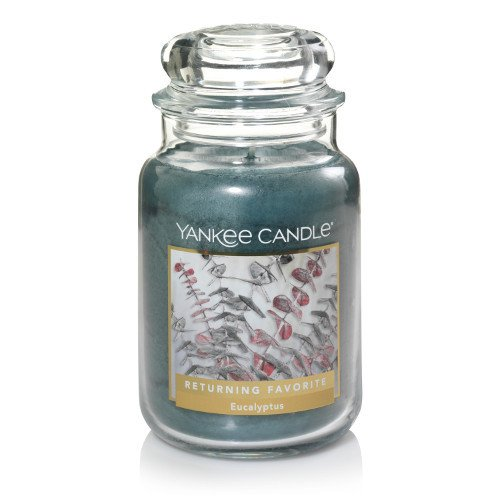 Yankee Candle Large Jar Candle, Eucalyptus by Yankee Candle
