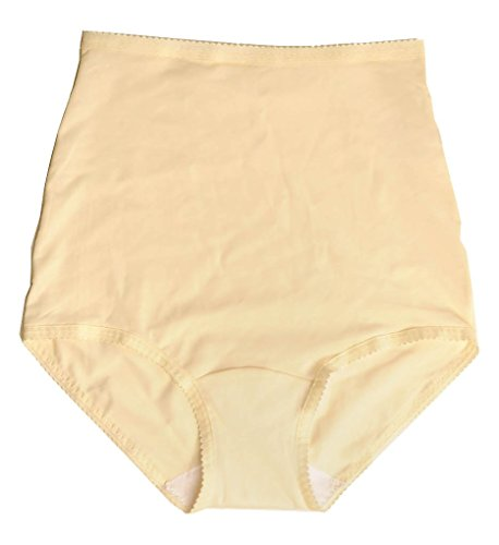 Shadowline Women's Pants & Daywear Nylon Brief Panty Ivory MEDIUM
