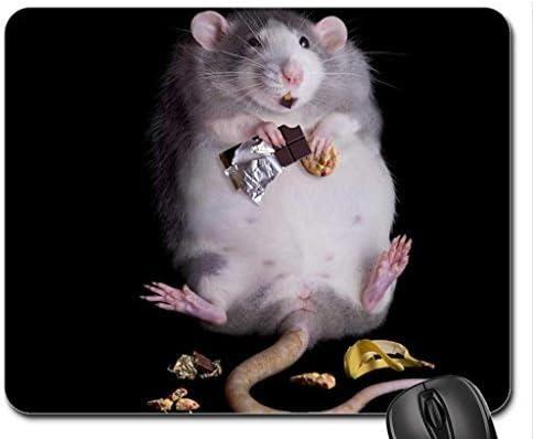 Fat rat Mouse Pad, Mousepad (Rodents Mouse Pad): Amazon.es ...