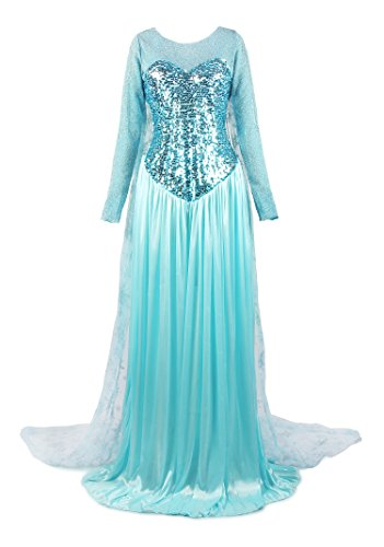 Elsa Costumes Adult Small (ReliBeauty Women's Elegent Princess Dress Costume Light Blue, Small)
