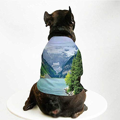 YOLIYANA Lake House Decor Comfortable Pet Suit,Landscape of Lake Louise and Mountains with Snows Alpine Trees in Alberta Canada for Teddy Chihuahua Bichon,L