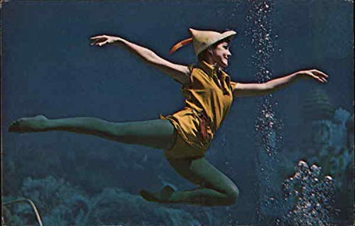 Peter Pan Flies Through the Water With the Greatest of Ease Amusement Parks Original Vintage Postcard