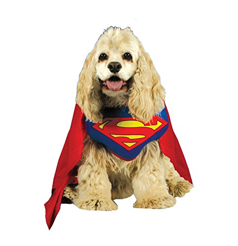Halloween FX Superman Pet Costume Large ()