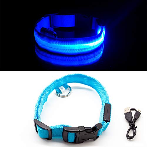 Light Up LED Rechargeable, Adjustable, Dog Collar, Anti Lost/Safe Collar for Your Big Dogs, Small Dogs and Puppies, 3 Flushing Modes (Medium, Blue)