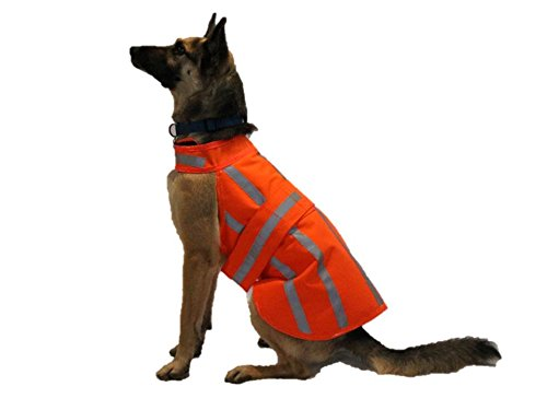 Dog Hunting Jacket (High Visibility / WaterProof) XLARGE