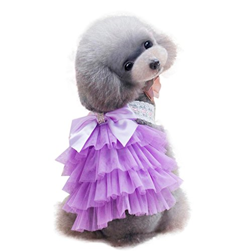 Pet Dress,Haoricu Hot Sale!Adorable Korean Style Puppy Skirt Apparel for Small Medium Dogs Clothes (M, Purple)