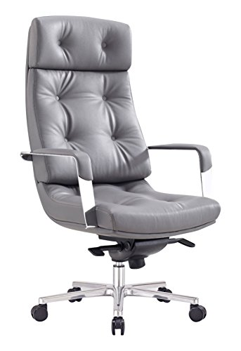 Limari Home LIM-71727 Valor Collection Modern High-Back Gas-Lift Contemporary Office Computer Desk Chair, Gray