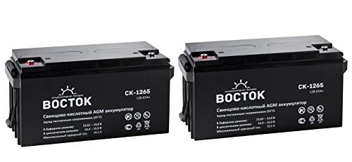 Bockok 12V 65 Amp NP12 65Ah Rechargeable Lead Acid Battery With Button Style Terminals Pack Of 2 by NPP