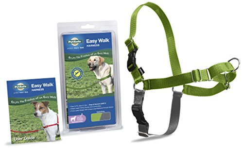 Large Apple Green (PetSafe Easy Walk Harness,  Medium/Large, APPLE GREEN/GREY for Dogs)