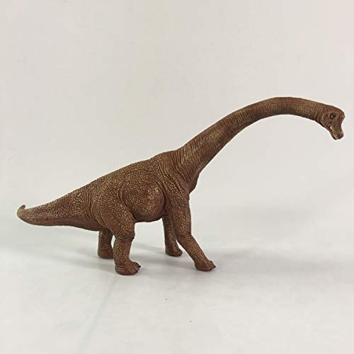 JIENI Educational Dinosaur Toys, Kids Realistic Toy Dinosaur Figures Authentic Type Plastic Dinosaurs Jurassic Dinosaur Statue Kids and Toddler Education ( M5005 ) by JIENI