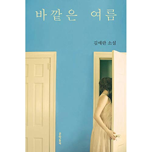 바깥은 여름 Summer Outside Korean Text Book Fiction Novel Kim Ae Ran 김애란