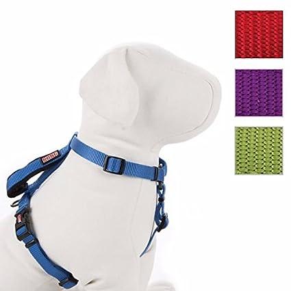 Amazon.com : Kong Comfort Dog Harness and Traffic Loop size: X Small