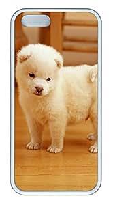 iPhone 5 5S Case Daze Puppy TPU Custom iPhone 5 5S Case Cover White