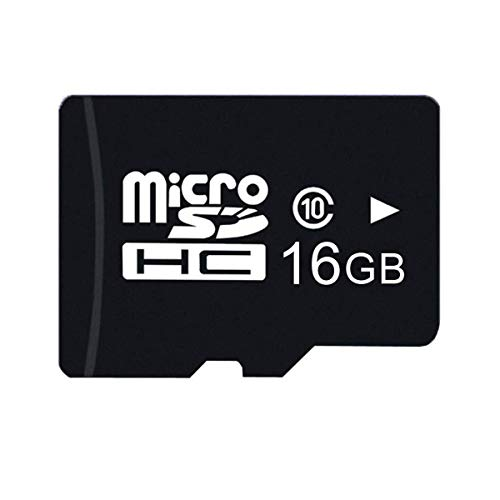 (SIKVIO 16G Micro SD HC Class 10 TF Fast TransFlash for Cell Phone MP3 MP4 Camera )