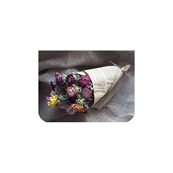 Natural Dried Flower 1 Pack Bouquet Artificial Flowers Decor Preserved Fresh Adornment Camera Christmas Daisy,Photo-Style13