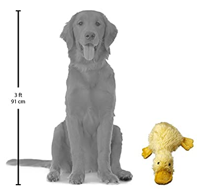 Duckworth Large Duck Dog Toy (Assorted Colors)