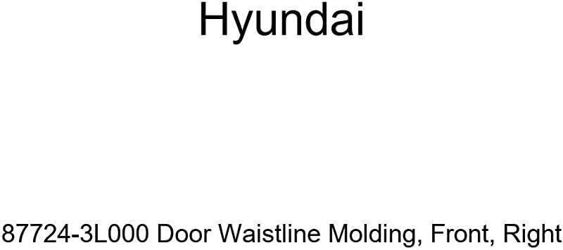 Right Front Genuine Hyundai 87724-3L000 Door Waistline Molding