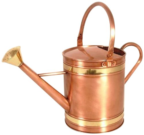 Madhu's COLLECTION - MG Décor Lawn and Garden Design Copper Coated on Iron Watering Can with Brass Belt, Large