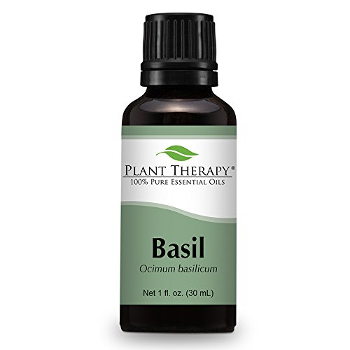 Basil Essential Undiluted Therapeutic Grade