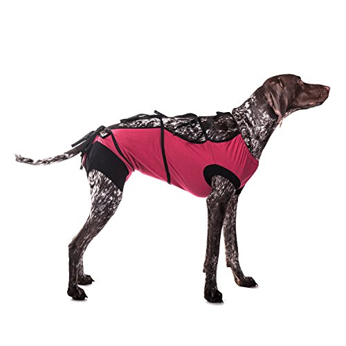 E-Collar Alternative Cats Dogs Designed to Protect Abdominal Wounds Skin Disease. Award Winning Patented Design Recommended Veterinarians Worldwide. (XX-Large, Burgundy) ()