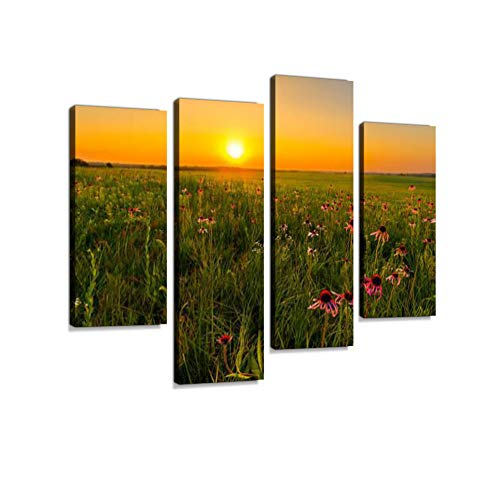 (Sunset in a Prairie Field of Purple Coneflowers Canvas Wall Art Hanging Paintings Modern Artwork Abstract Picture Prints Home Decoration Gift Unique Designed Framed 4)