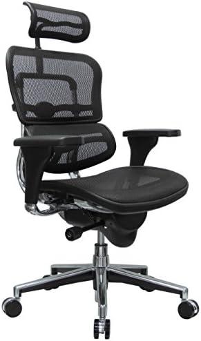 Eurotech Seating Ergohuman High Back Mesh Managers Chair