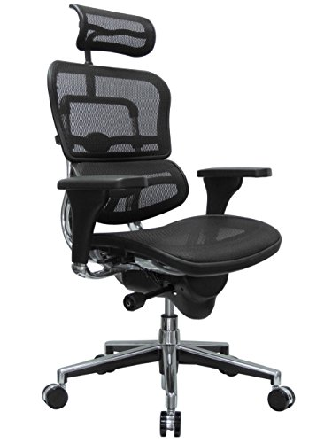 Eurotech Seating Ergohuman ME7ERG(N) High Back Mesh Managers Chair, Black (Mesh Eurotech Ergohuman)