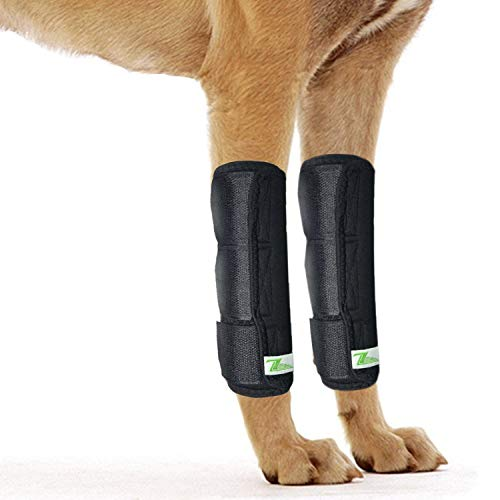 Front Dog Leg Brace One Pair Heals Hock Joint Wrap Sleeve for Hind Legs(L/XL Front)