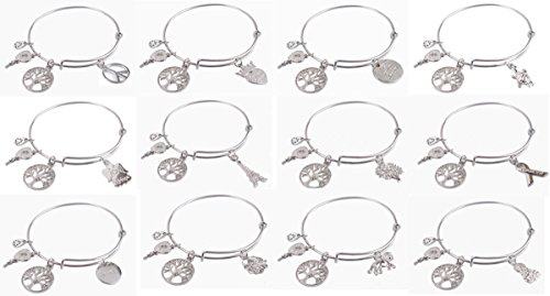 ChangJin 12PCS Mixed Lots of Silver Tone Color Fashion Expandable Wire Charm Bracelet Bangles (12, CJ91128-91139 Set) ()