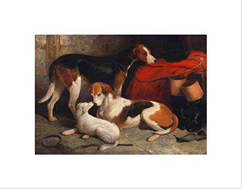 ANIMALS FOXHOUNDS TERRIER HUNT HUNTING DOGS BARRAUD FRAMED PRINT (Hunt Framed)