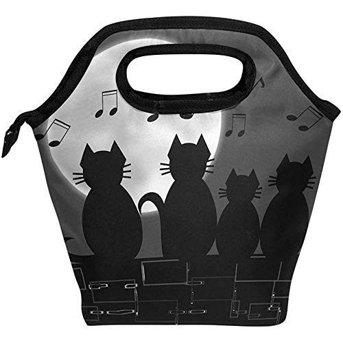 HOOAL Lunch Bag Animal Cat Music Note Insulated Reusable Lunch Box Portable Lunch Tote Bag Meal Bag Ice Pack for Kids Boys Girls Adult Men Women
