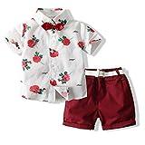 Toddler Baby Boy Shorts Sets Hawaiian Outfit,Infant