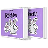 Little Mice / Ratoncitos: A bilingual lift-the-flap book (Canticos)